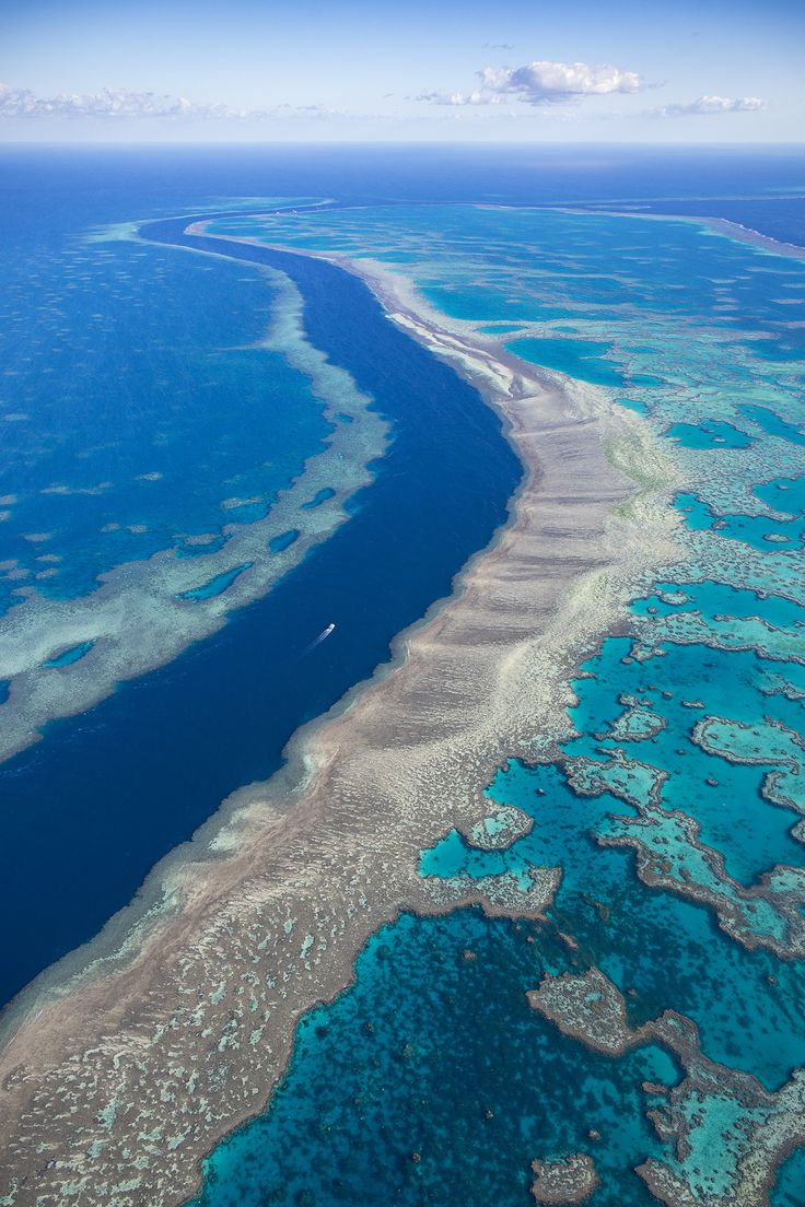 "Ocean River - <a href=""http://williampatino.com/2016-photography-workshops/"">Website and Workshops</a> The Great Barrier Reef is an amazingly beautiful sight to behold. Sad that this treasure is slowly being destroyed. If we are to make a change for our future, the time is now. Every little step we take, however small, all adds up."