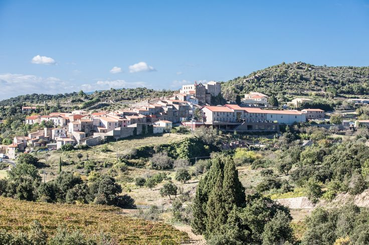 Languedoc : Your Next Destination For French Wine Country Luxury - Hotel Riberach