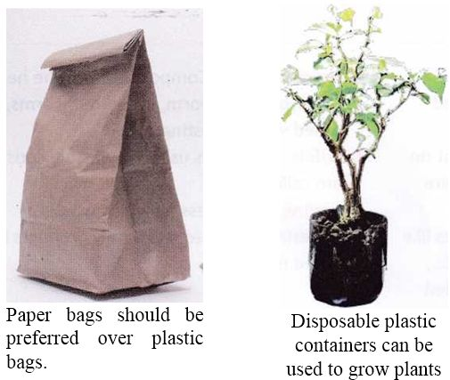 Biodegradable Plastic Bags vs Recycling