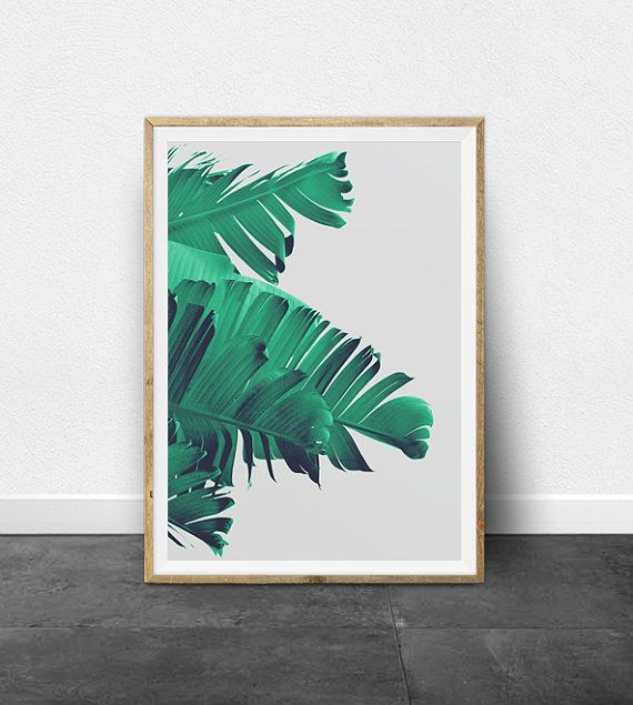 PRINTABLE ART - TROPICAL PALM TREE PRINT Download files instantly and print from home. This listing is for a colorful, refreshing, tropical print. The photo shows the leaves of a banana palm tree, using pretty mint shades of green, a light grey backdrop and dark blue hues in the shadows. **** SPECIAL OFFER **** Buy 2, Get 4!**** Select four prints and use code 4FOR2 during checkout to receive 2 of them free! You only pay for 2! ****   INSTANT DOWNLOAD This listing is for a digital file…