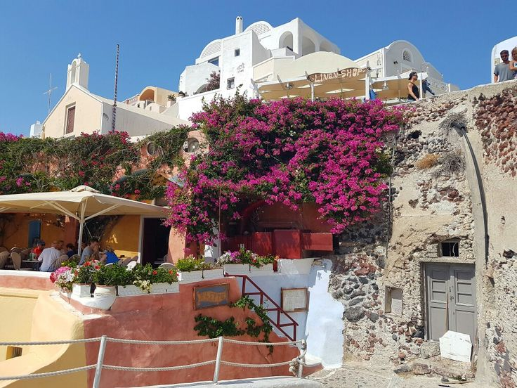 Kastro restaurant in Oia #santorini #oia #santorinigreece #santoriniisland #santorinioia #travelingreece #greece #travel