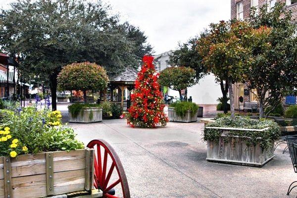 123 Best Christmas N S Carolina Georgia And Tennessee Usa Images On Pinterest Georgia