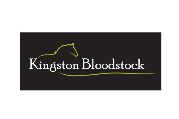 Kingston Bloodstock Logo Design