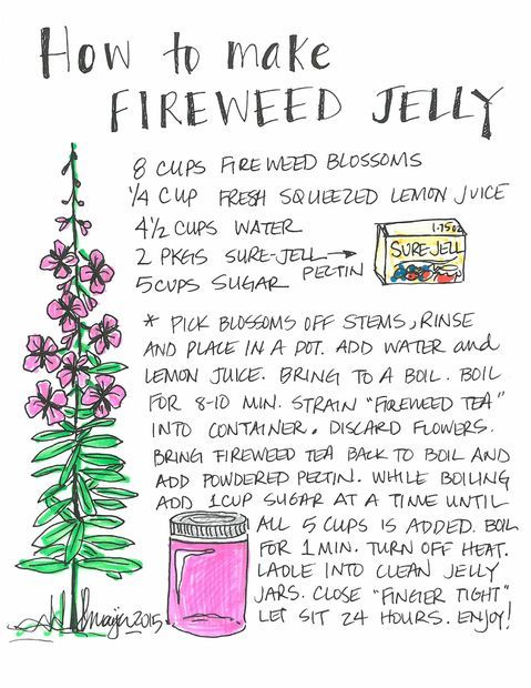 Fireweed Jelly.jpg