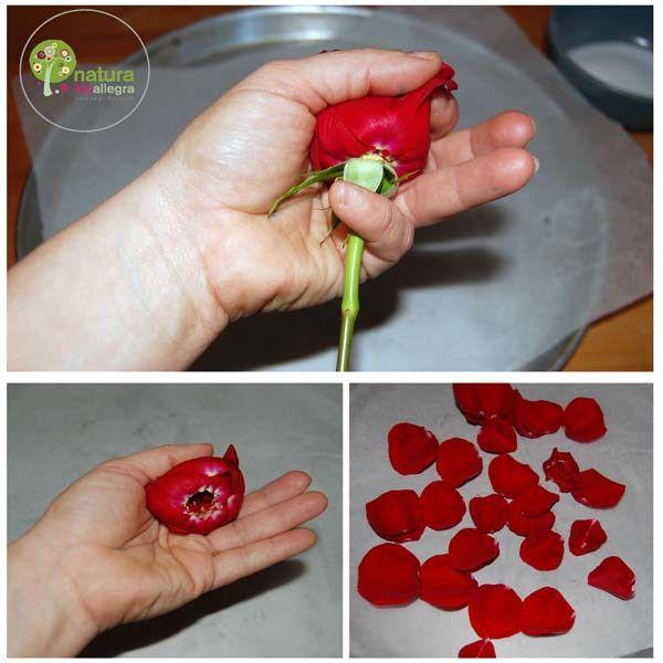 Petali di Rosa Zuccherati