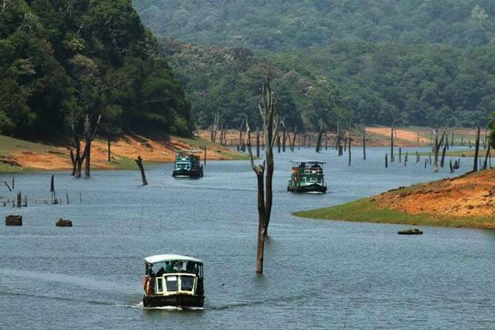 Thekkady boat safari in Idukky Kerala