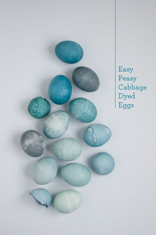 These pretty blue eggs were dyed using cabbage leaves. Click through for instructions.