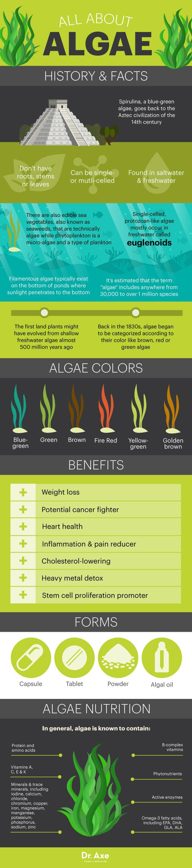 Top 7 Algae Benefits that May Surprise You - Dr. Axe