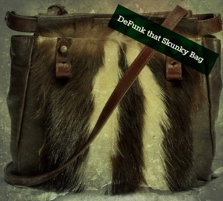 Have a funky skunky smelling handbag try this to help for Musty odor definition