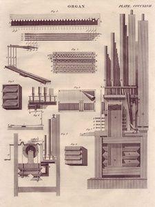 Organ. Plate CCCCXLVII | Sanders of Oxford