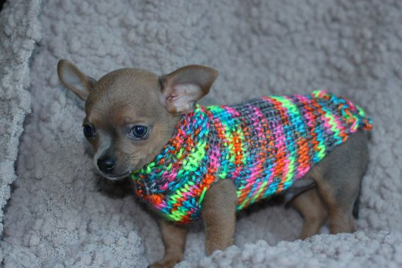Voldoen aan mijn nieuwe Puppy collectie door ChihuahuaKisses