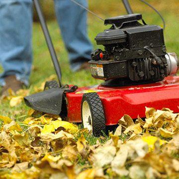 Home Improvement Outdoor Power Equipment Gas Mowers