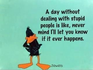 that I will: Quotes, So True, Funny Stuff, Funnies, Humor, Things, Smile, Stupid People
