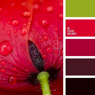 bermejo, color escarlata, color rojo amapola, color rojo oscuro, elección del color para el diseño, matices de color rojo, rojo burdeos, rojo escarlata, rojo oscuro, rojo y verde, selección del color para el hogar, tonos rojos, verde y rojo.