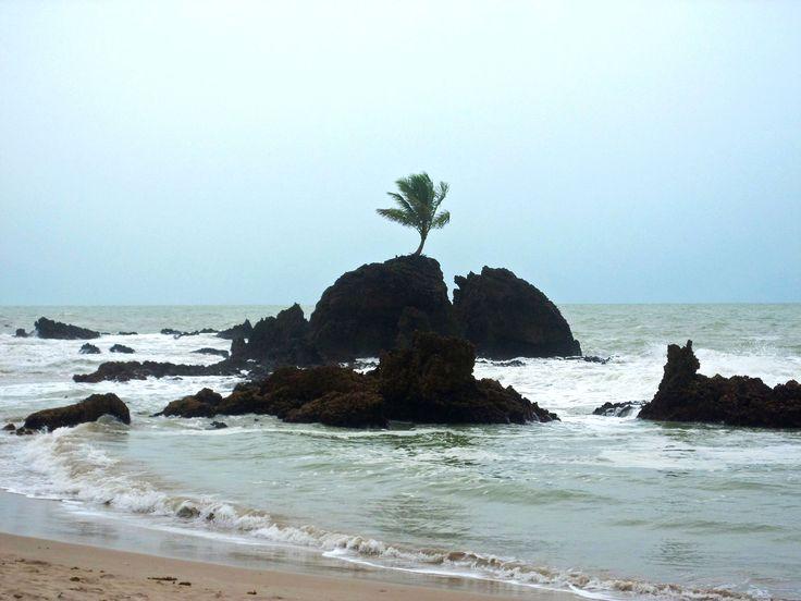 Praia De Tambaba - Conde-Pb