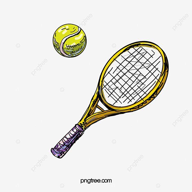 Tennis Tennis Ball Cartoon Tennis Racket Png Transparent Clipart Image And Psd File For Free Download Tennis Tennis Photos Tennis Open