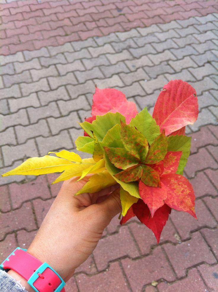 #faul #autumn #leaf