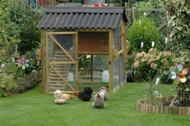 yam coop: better homes and garden chicken coop plans