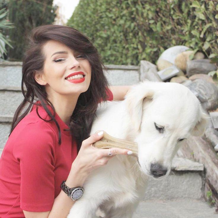 """6,583 mentions J'aime, 28 commentaires - Dear Caroline (@carotte1305) sur Instagram: """"Mon n'amoureux me manque! ... Suis sur que lui il s'en fiche complètement 😳 #dog #away #jesuischipie"""""""