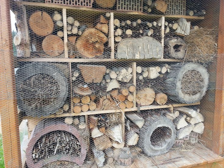 Hotel dla owadów Poczopek