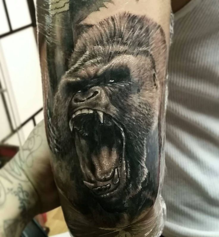 """74 Likes, 4 Comments - isaac serrano (@tattooartbyisaac) on Instagram: """"I didn't finish the other portrait but i did this gorilla on a full sleeve project i got going on…"""""""