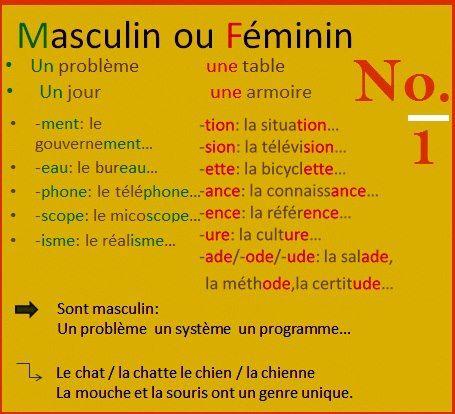 masculin vs feminin