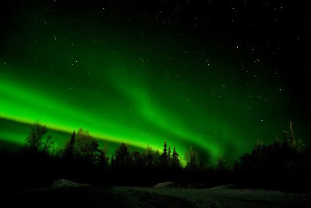 The northern lights as seen over Santa's Lapland in Finland.