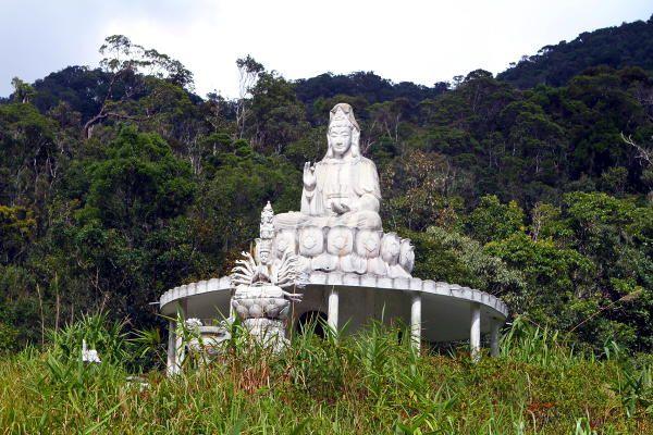 Buddha statue and the Bodhisattva Avalokiteshvara in the Bach Ma National Park in Hue, Vietnam. http://foxtravels.net/bach-ma-national-park/
