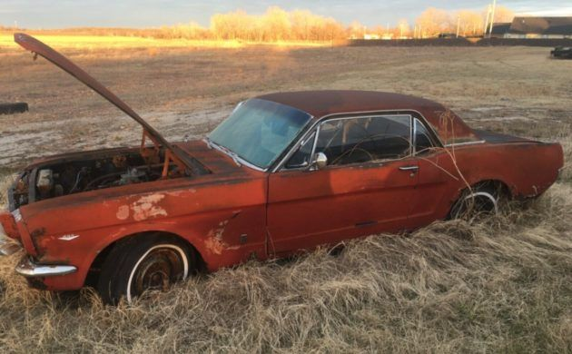K Code Field Find 1966 Ford Mustang Coupe In 2020 Mustang Coupe 1966 Ford Mustang Ford Mustang