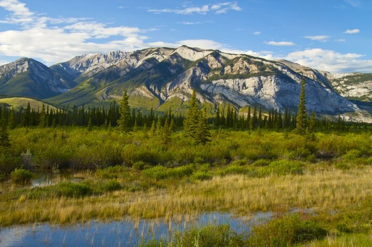 Jasper National Park. Some of the landscape you will pass while  you make your way through the park to the Overlander. Save time to enjoy it.