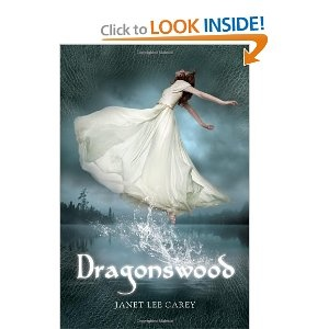 I loved this book.. witch trials, dragons, fairies, action -- yes, I'm a dork. I don't care. :)