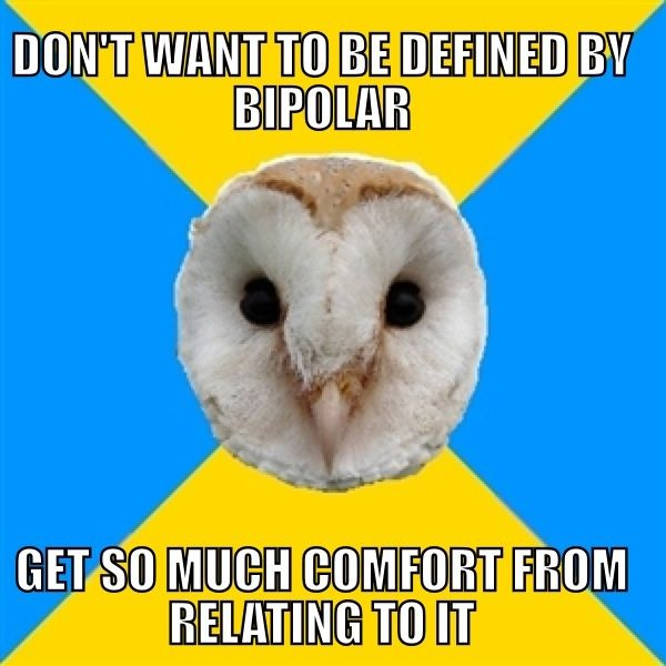 Bipolar Owl on being defined by your disorders