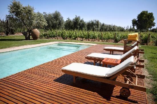 Pool on the vineyard - Maipu