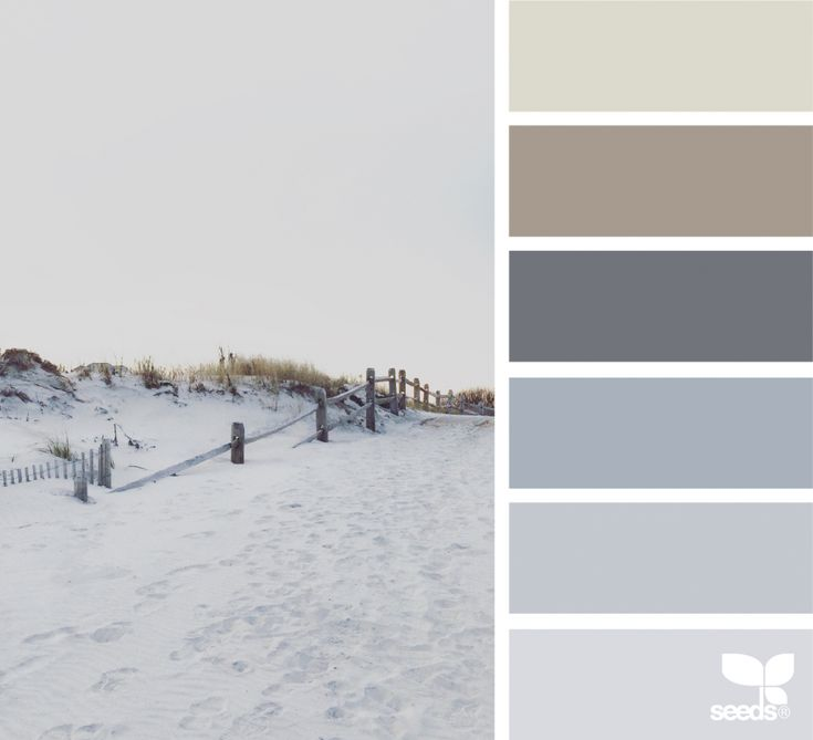 { dune tones } image via: @suertj