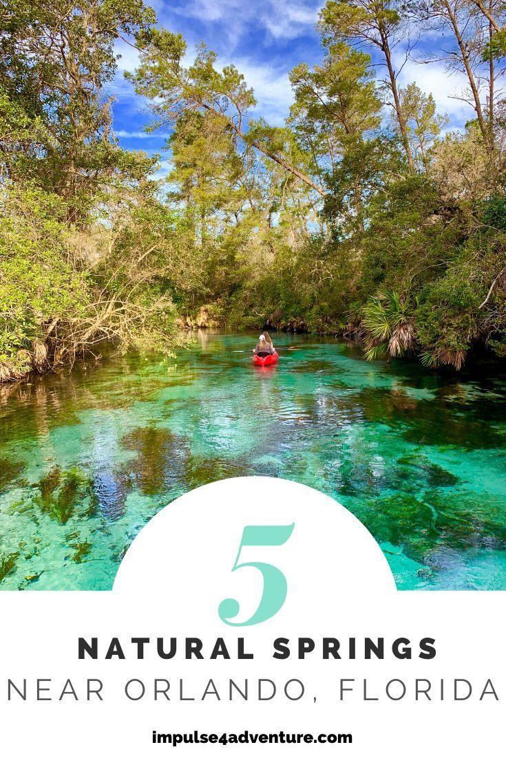 The 5 Best Natural Springs Near Orlando Impulse4adventure Florida Adventures Springs Near Orlando Natural Springs In Florida Florida Springs