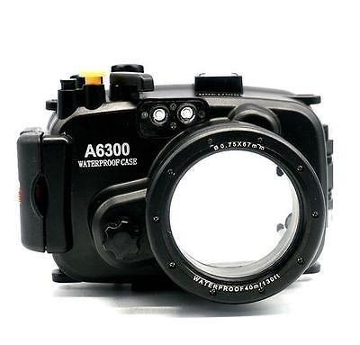 Best 25+ Diving camera ideas on Pinterest | Scuba diving, Diving ...