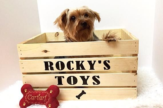 Adorable Dog Toy Box Idea Dog Toy Box Wooden Boxes Toy Boxes