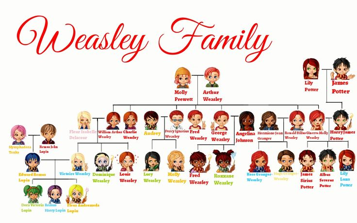 Weasley Family tree, with Harry Potter, Hermoine, Lupin etc included due to their marriages