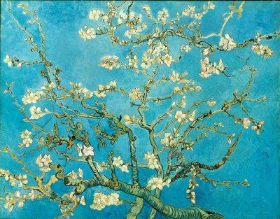 "Vincent van Gogh, ""Almond blossom"" February 1890. Painted for his brother Theo, his wife, and their new baby. As a symbol of this new life, Vincent chose an almond tree, which blooms early in southern regions, announcing the coming spring as early as February."