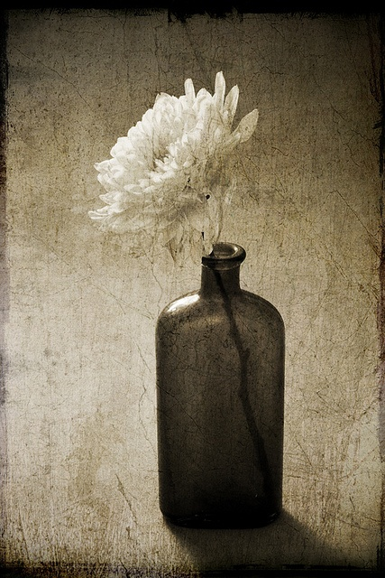 Cremon and a Brown Bottle by jrlarimer, via Flickr