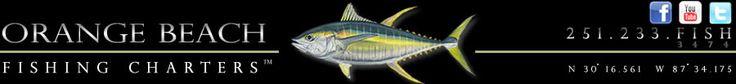King Mackerel Dip