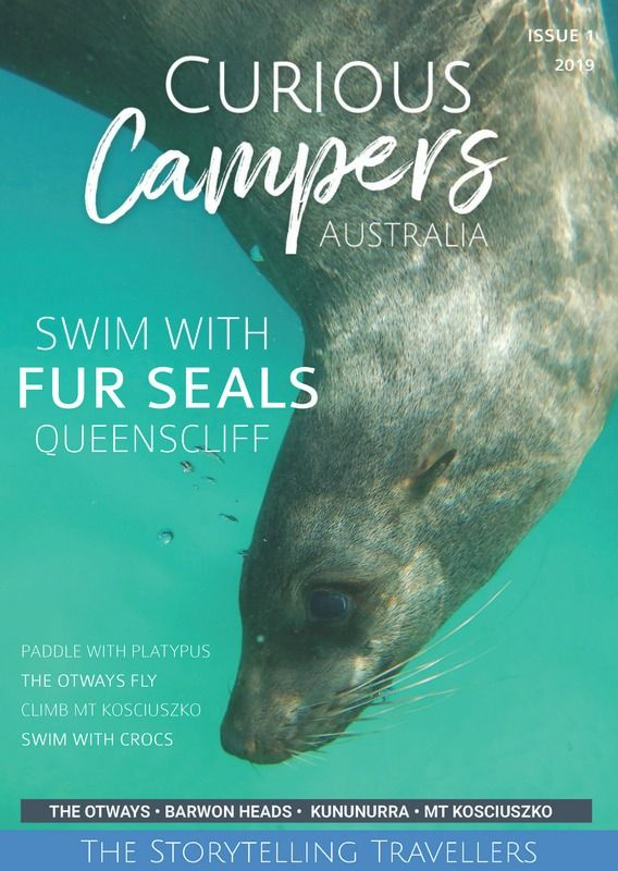 The first FREE Curious Campers Magazine is now available