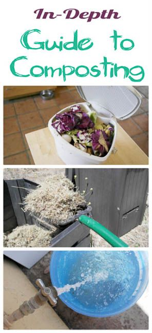 Have you ever wondered about making your own compost?  Check out this great article, Composting Guide: The Dirt on Dirt