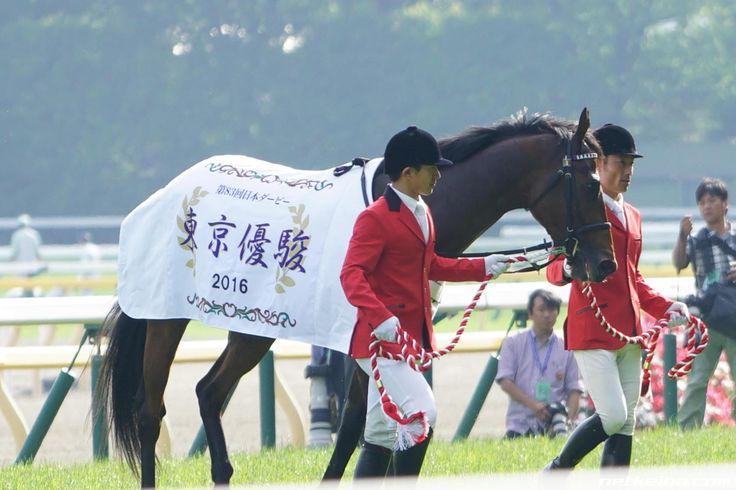 マカヒキ みんなの投稿写真|競走馬データ - netkeiba.com