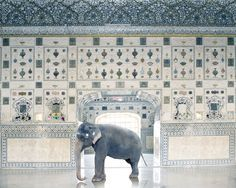 Karen Knorr, Temple Servant, Amber Fort, Jaipur. From the book India Song © Skira Editore. Courtesy of the artist. http://www.yatzer.com/karen-knorr-india-song