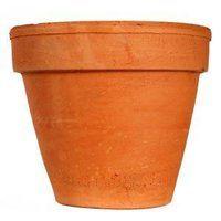 Paint Plastic Plant Pots