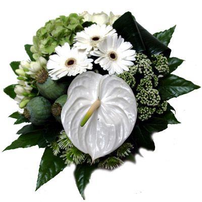 Boeket 'White Serenity'  Fraai boeket met witte bloemen. De witte kleur maakt het een sereen en rustig boeket die bij alle interieuren past! De anthurium en gerbera's zijn de eye catchers van dit boeket. In dit boeket zijn o.a. Anthurium Gerbera's Rozen en andere bijpassende bloemen verwerkt.  EUR 35.95  Meer informatie  http://ift.tt/29p4o5W #bloemen