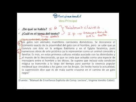 Taller estrategias de comprensión lectora - Lección 1 - YouTube