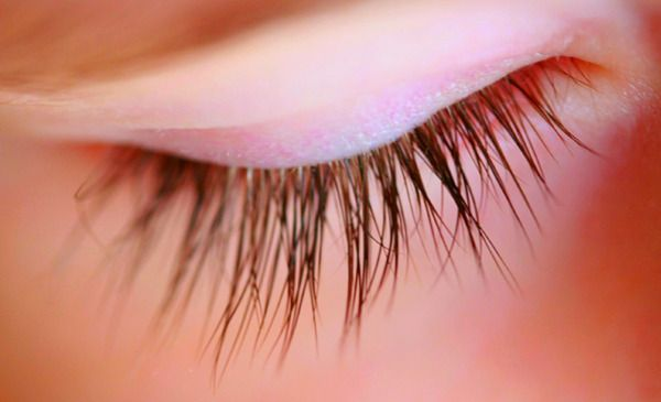 how to grow your eyelashes big