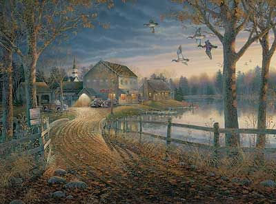 Rendezvous at Duck Inn by Sam Timm | Wild Wings | Art ...